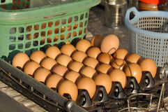 Eggs Package Outdoor Full Stock Images