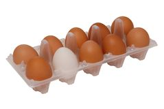 Eggs in package royalty free stock photo