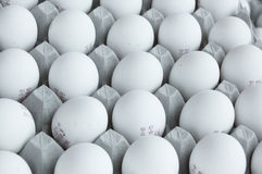 Eggs in packaging Royalty Free Stock Image