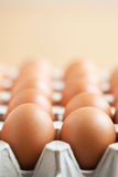 Eggs in packaging. Tray of eggs in a carton packaging Stock Photo