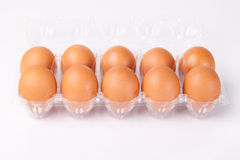 Eggs packed isolated white background Royalty Free Stock Photography