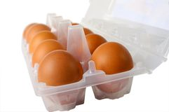 Eggs in packing closeup Stock Photos