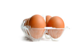 Eggs in packing Stock Photography