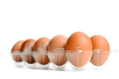 Eggs in packing Stock Images