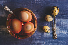 Eggs in the paint Stock Images