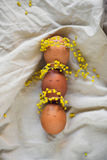 Eggs with painted faces with mimosa wreathes. Shot of three brown egs with painted faces and flowers wrethes Royalty Free Stock Image