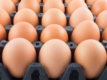 Eggs in panel. From thailand stock photos