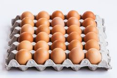 Eggs in panel Royalty Free Stock Images