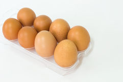Eggs in the panel with isolate background Royalty Free Stock Photos