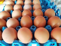 Eggs panel. Packaging fresh view top panel background eggs royalty free stock photography