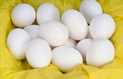 Eggs and paper Stock Photography