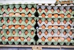 Eggs in paper box Stock Image