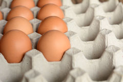 Eggs in a paper container. Eggs in trays made of paper royalty free stock photos