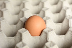 Eggs in a paper container. Eggs in trays made of paper stock image