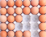 Eggs in paper packaging Royalty Free Stock Photos
