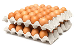 Eggs in paper tray Stock Images