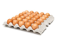 Eggs in paper tray Stock Image