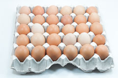 Eggs in paper tray ,Brown eggs in an egg carton. Eggs in paper tray on white,Brown eggs in an egg carton Stock Images