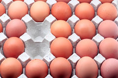 Eggs in paper tray Stock Photos