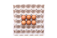 Eggs in paper tray Royalty Free Stock Photo