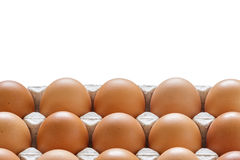 eggs in paper tray with space. royalty free stock images