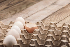 Eggs in a paper tray Stock Image
