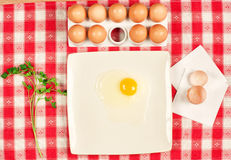 Eggs and parsley Stock Images