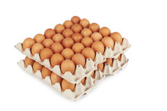 Eggs in pater tray Royalty Free Stock Photos