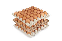 Eggs in pater tray Stock Photos