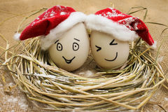 Eggs with persons in the nest for Christmas. Happy eggs with persons in the nest for Christmas Stock Photo