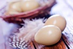 Eggs pheasant Stock Images