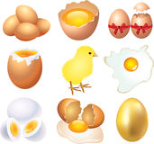 Eggs photo-realistic set Royalty Free Stock Photography