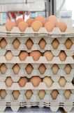 Eggs in piled cartons Stock Images