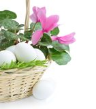 Eggs and pink flower in basket Royalty Free Stock Photography