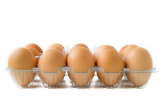 Eggs in plastic box Stock Image