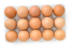 Eggs in plastic box Royalty Free Stock Image