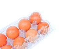 Eggs in a plastic carton. Isolated on a white background Royalty Free Stock Image
