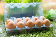 Eggs in plastic container royalty free stock image