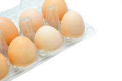 Eggs in a plastic tray Stock Photography