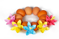 Eggs on the plate with colored paper flowers Stock Photos