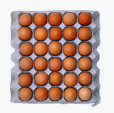Eggs on the plate Stock Photo