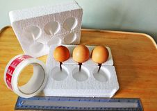 Eggs in polystyrene box for posting Royalty Free Stock Images