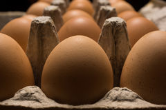 Eggs poultry concept. Royalty Free Stock Images