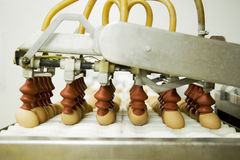 Eggs on production line Royalty Free Stock Image