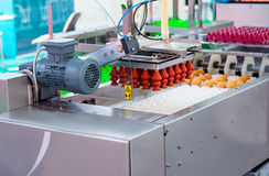 Eggs production line without eggs stock photography