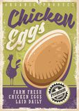Eggs promotional poster design Royalty Free Stock Photography