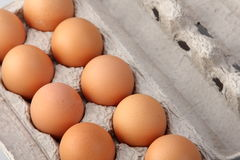 Eggs in protective case Royalty Free Stock Photography
