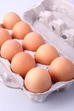 Eggs in protective case Royalty Free Stock Image