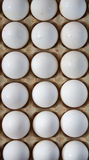 Eggs in a protective container Royalty Free Stock Photo