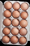 Eggs in a protective container Royalty Free Stock Image